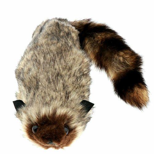 Raccoon, Life Like