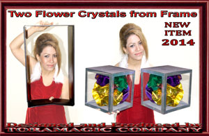 2 Crystal Cubes w/ Flowers from Frame - Tora