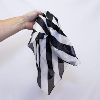 Silk - Zebra Print - 24 inch
