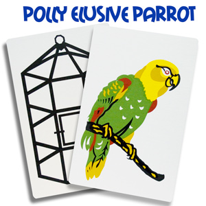 Polly the Elusive Parrot