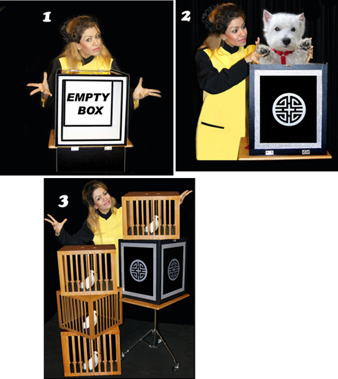 Transformation of Pet to 4 cages - Tora