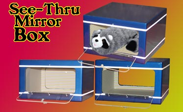 See thru Mirror Box