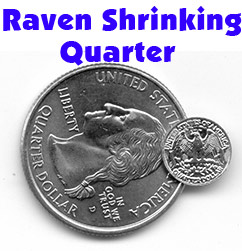 Raven Shrinking Quarter